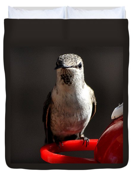 Duvet Cover featuring the photograph Female Anna Hummingbird by Jay Milo