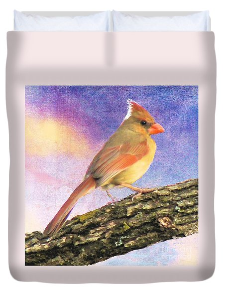 Female Cardinal Away From Sun Duvet Cover by Janette Boyd