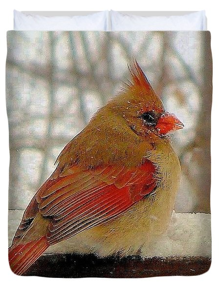 Female Cardinal Caught In Snowstorm Duvet Cover