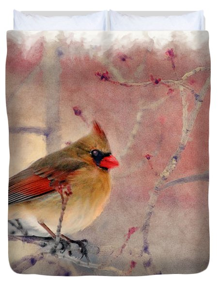 Female Cardinal Portrait Duvet Cover