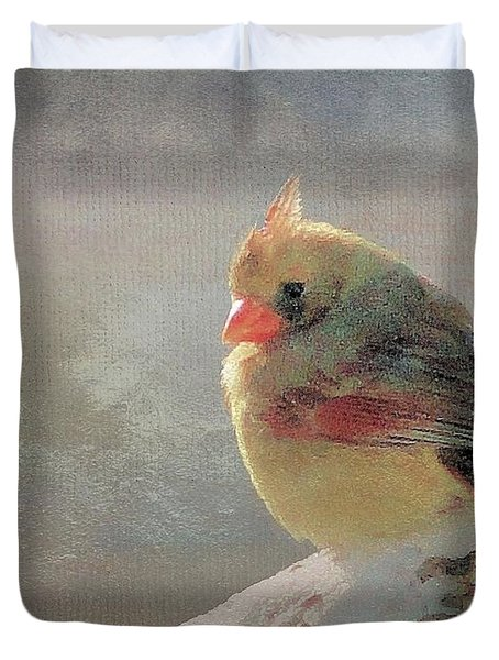 Female Cardinal V Duvet Cover by Janette Boyd