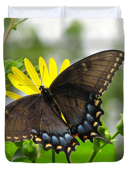 Duvet Cover featuring the photograph Female Dark Form Swallowtail Butterfly  by Eva Kaufman
