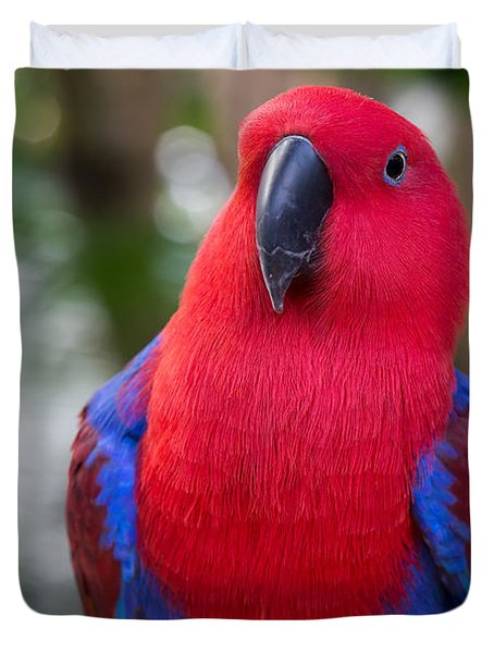 Female Eclectus Parrot Portrait Duvet Cover