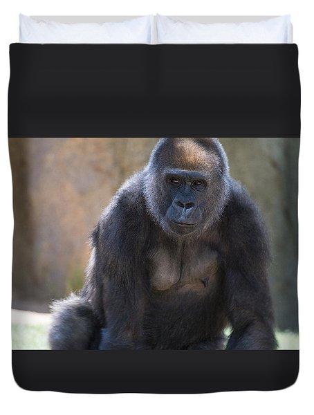 Female Gorilla Duvet Cover by Garry Gay