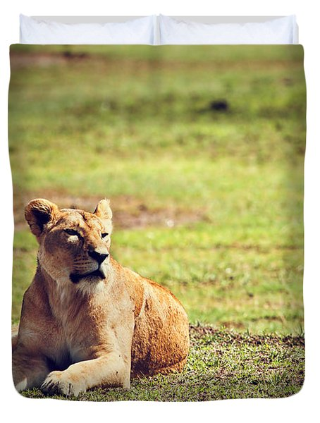 Female Lion Lying. Ngorongoro In Tanzania Duvet Cover by Michal Bednarek