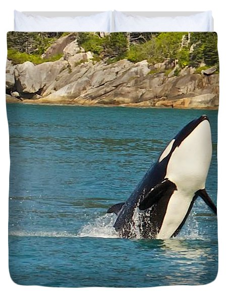 Female Orca Cheval Island Alaska Duvet Cover