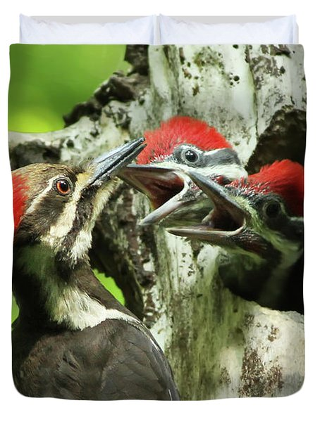 Female Pileated Woodpecker At Nest Duvet Cover