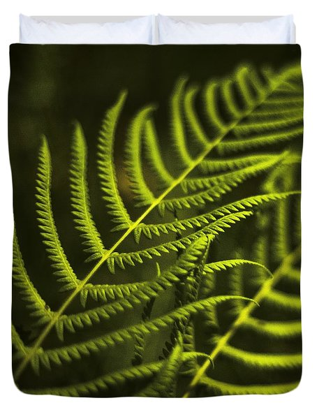 Fern Duvet Cover by Bradley R Youngberg