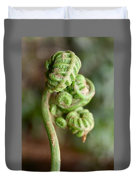 Fern Bud Duvet Cover by Venetia Featherstone-Witty