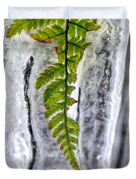 Fern In Ice Duvet Cover by Dan Friend