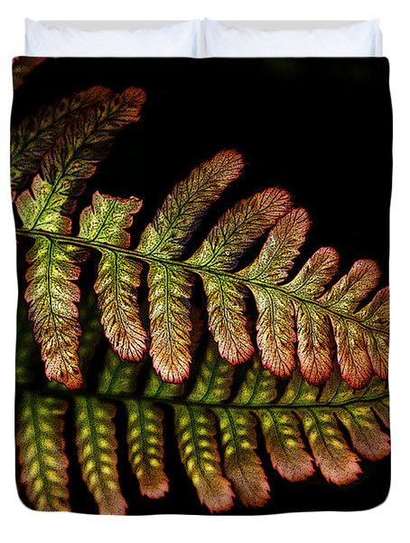 Duvet Cover featuring the photograph Fern by Sonya Lang