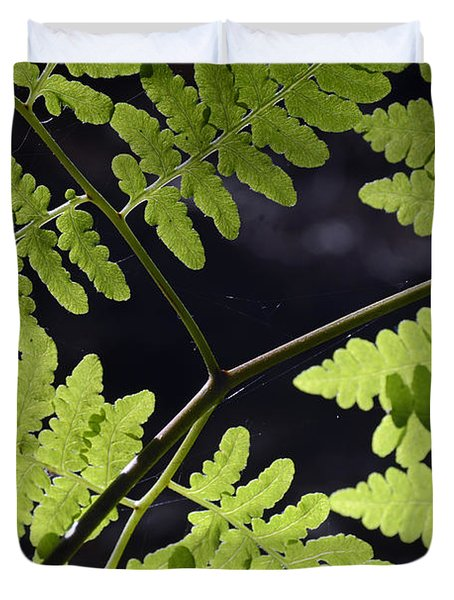 Ferns And Spider Webs In Yosemite Duvet Cover