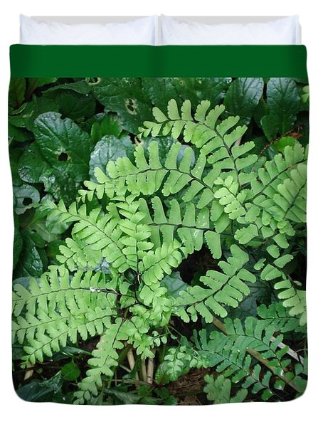 Ferns-iii Duvet Cover