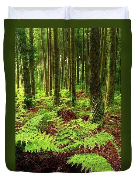 Ferns In The Forest Duvet Cover by Gaspar Avila