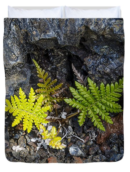 Ferns In Volcanic Rock Duvet Cover