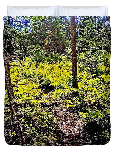 Ferns On Berry Hill Pond Trail In Gros Mo Duvet Cover