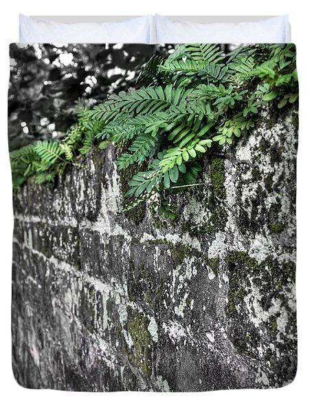 Ferns On Old Brick Wall Duvet Cover