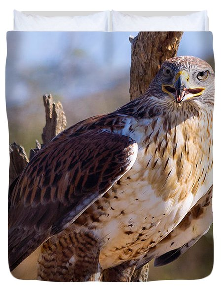 Ferruginous Hawk Duvet Cover