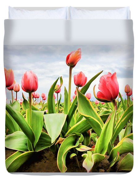 Field Of Pink Tulips Duvet Cover by Athena Mckinzie