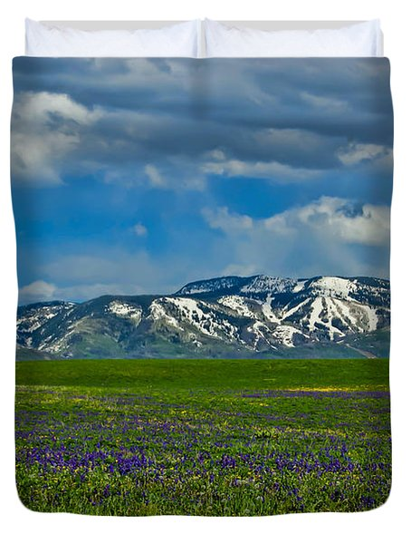 Field Of Wildflowers Duvet Cover by Don Schwartz