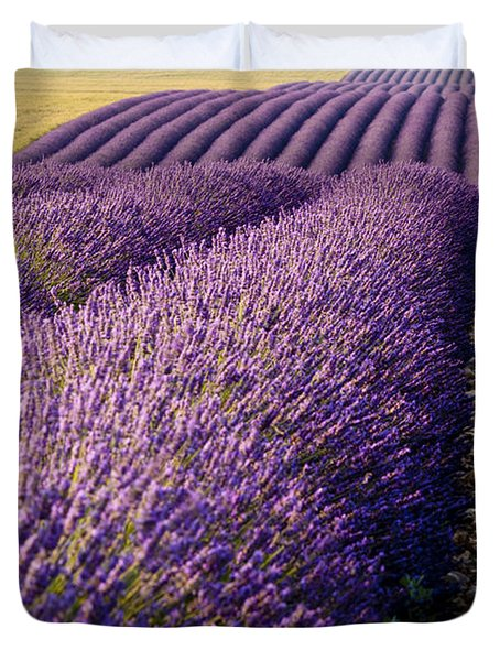 Duvet Cover featuring the photograph Fields Of Lavender by Brian Jannsen