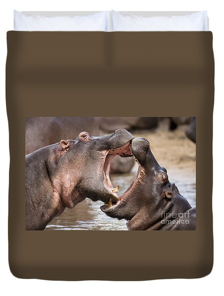 Fighting Hippos Duvet Cover by Richard Garvey-Williams