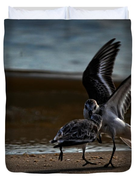 Fighting Sandpipers Duvet Cover