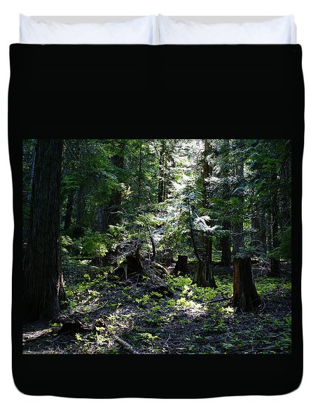 Duvet Cover featuring the photograph Filtered Sunlight Peace by Ben Upham III