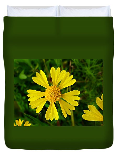 Wild Fine Leaved Sneezeweed Duvet Cover by William Tanneberger