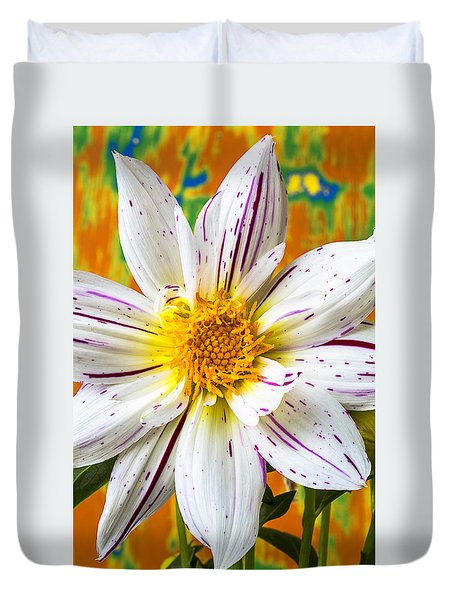 Fireworks Dahlia White And Pink Duvet Cover by Garry Gay