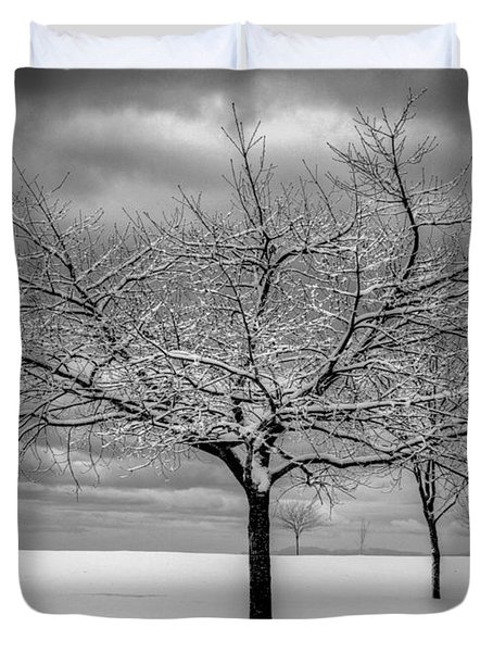 First Snow Duvet Cover by Randy Hall
