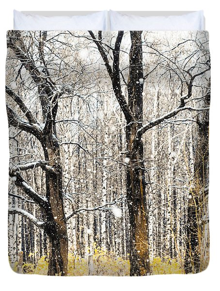First Snow. Tree Brothers Duvet Cover by Jenny Rainbow