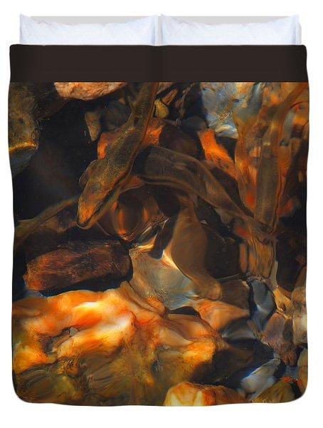 Fish 1 Duvet Cover