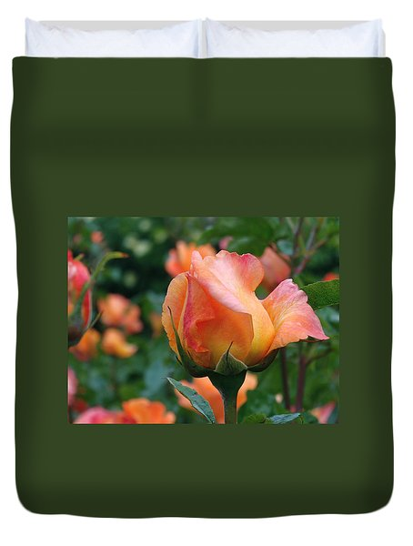 Fit For A Queen Duvet Cover by Rona Black