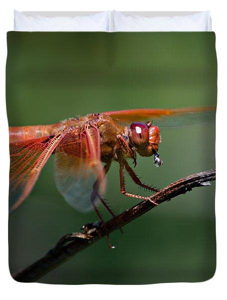 Flame Skimmer Dragonfly Duvet Cover