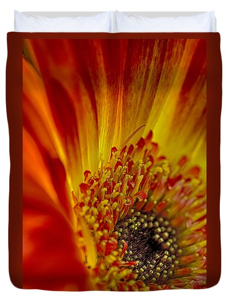 Flaming Gerbera Duvet Cover
