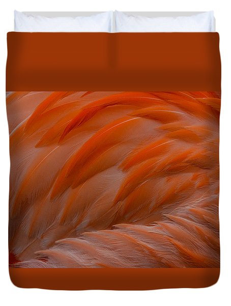Flamingo Feathers Duvet Cover by Michael Hubley