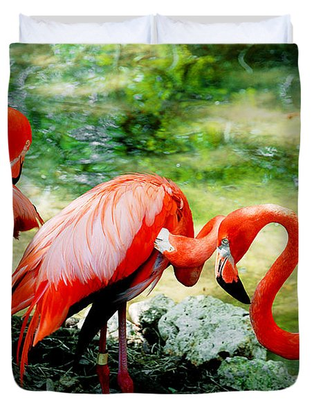 Flamingo Friends Duvet Cover