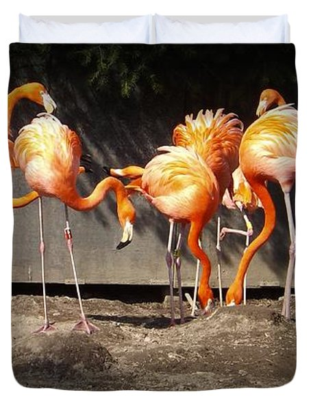 Flamingo Hangout Duvet Cover by Sara  Raber