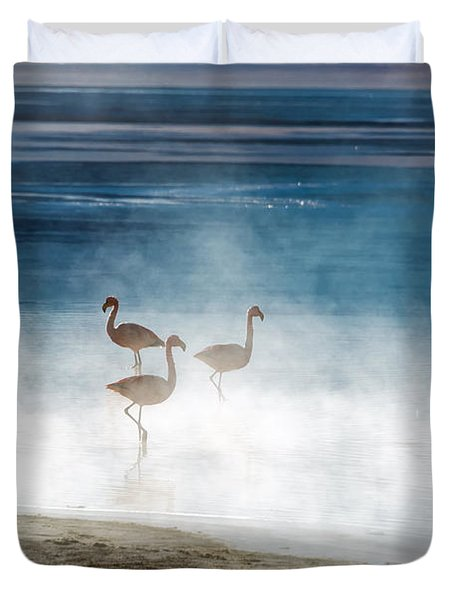 Flamingoes In Bolivia Duvet Cover