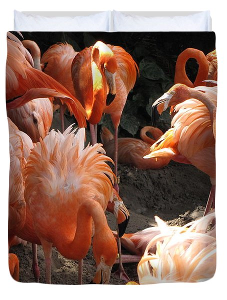 Duvet Cover featuring the photograph Flamingos by Beth Vincent