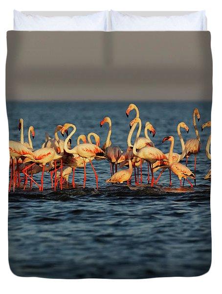Flamingos On Lake Turkana Outside Elyse Duvet Cover