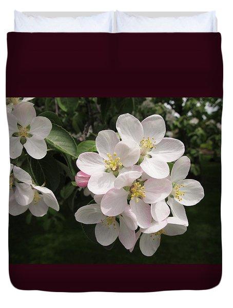 Fleeting Spring Beauty Duvet Cover