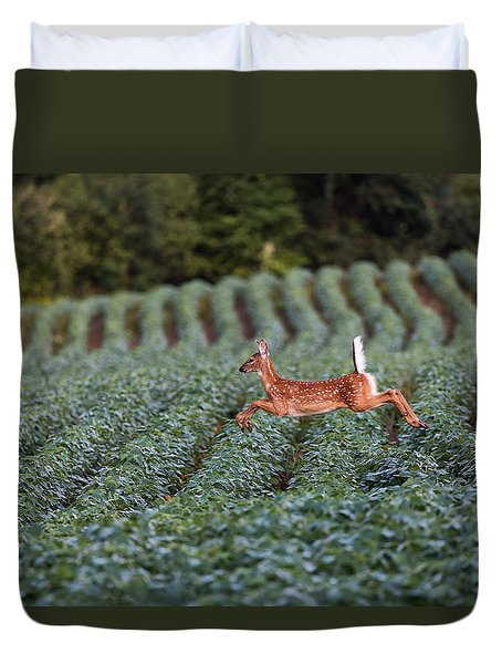 Flight Of The White-tailed Deer Duvet Cover by Everet Regal