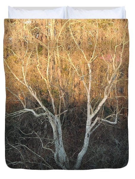 Duvet Cover featuring the photograph Flint River 12 by Kim Pate