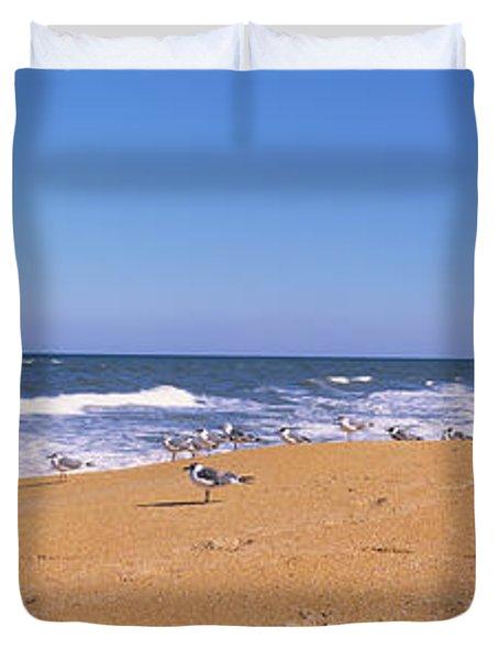 Flock Of Birds On The Beach, Flagler Duvet Cover