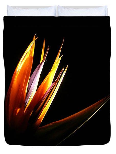 Flor Encendida Detalle Duvet Cover