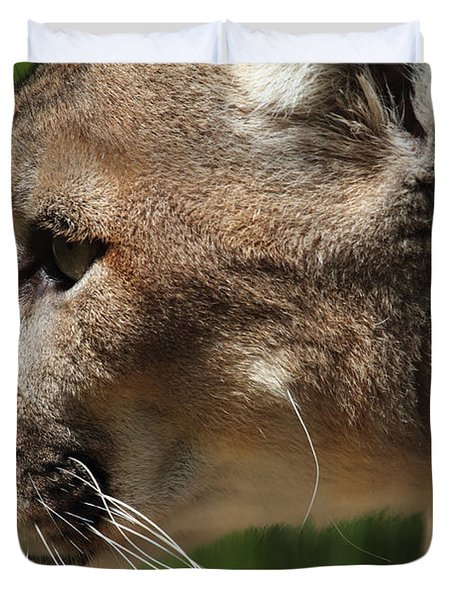 Duvet Cover featuring the photograph Florida Panther Profile by Meg Rousher
