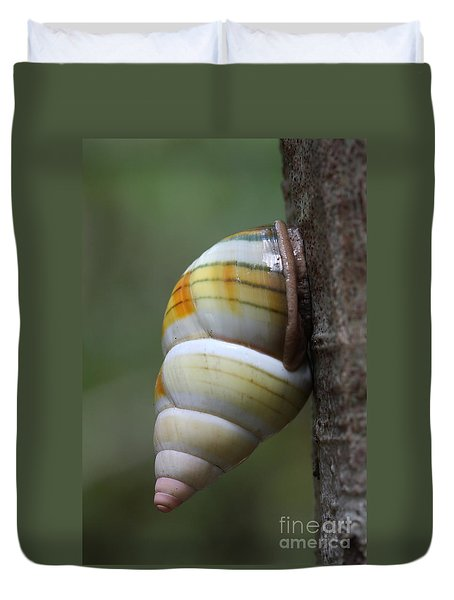 Duvet Cover featuring the photograph Florida Tree Snail by Paul Rebmann
