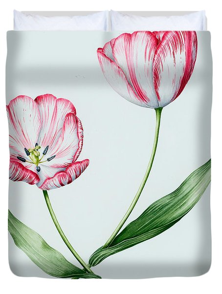 Florists Tulip Mabel Duvet Cover
